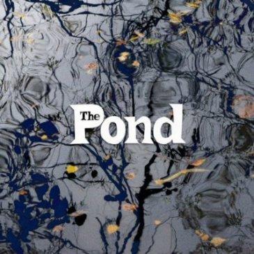 pondcover